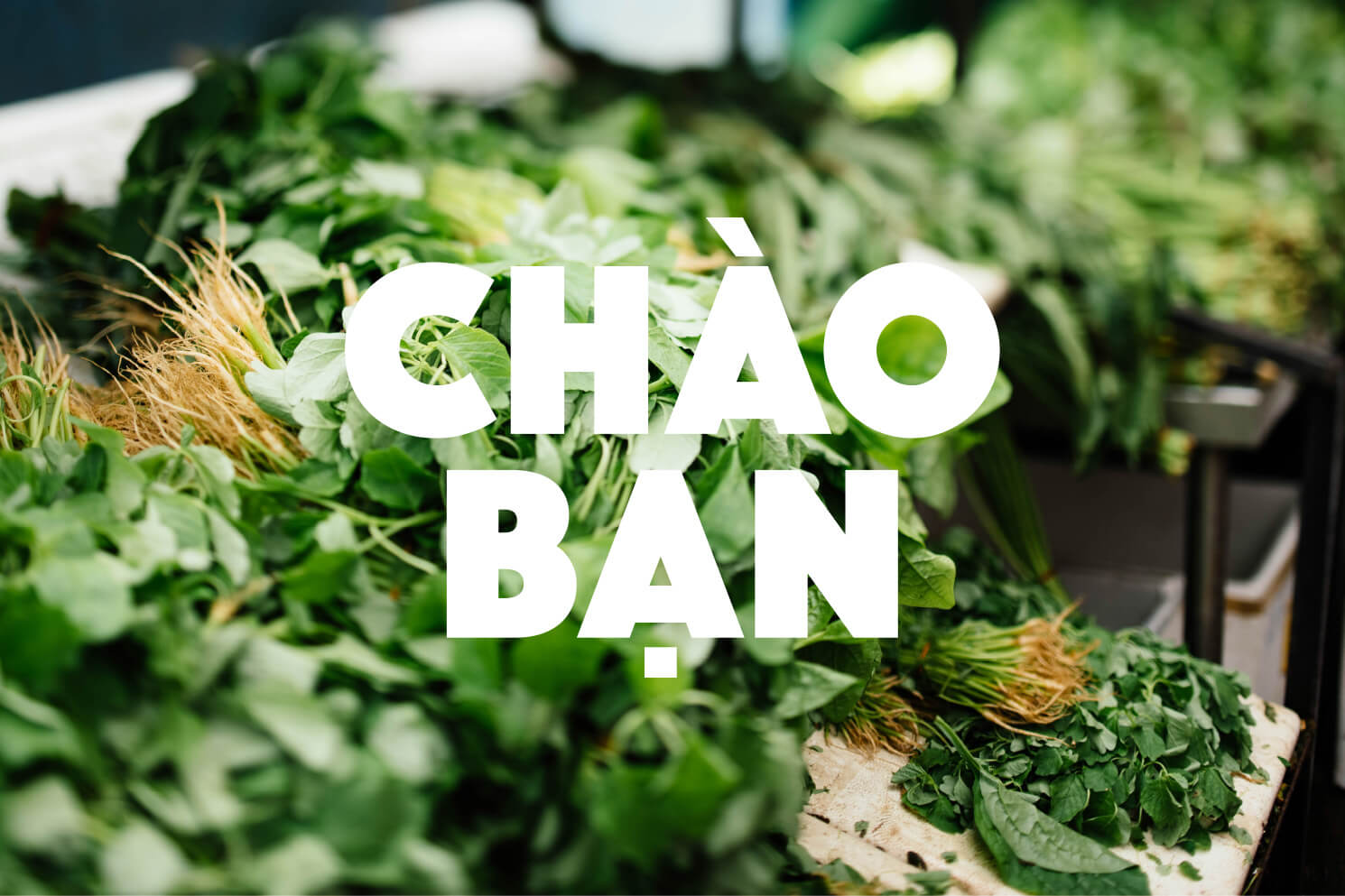 Chao Ban Logotype Herbs